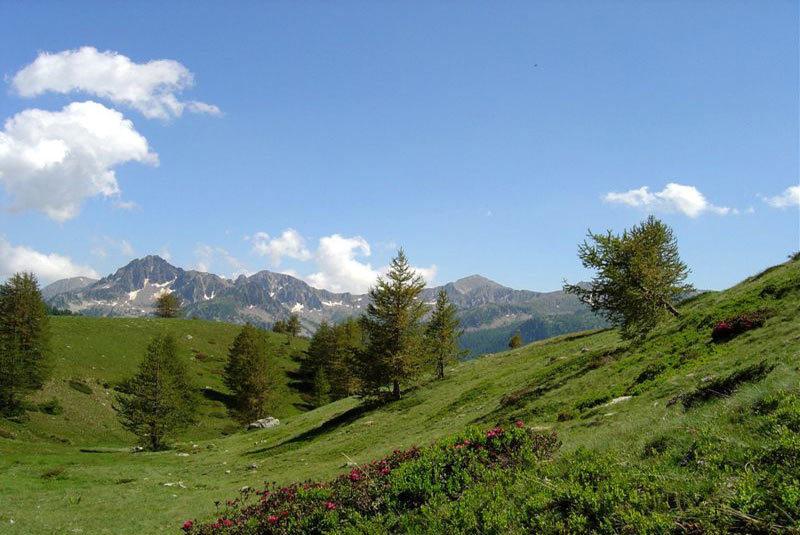 Montagne Douce Gites De France Des Alpes Le Portail